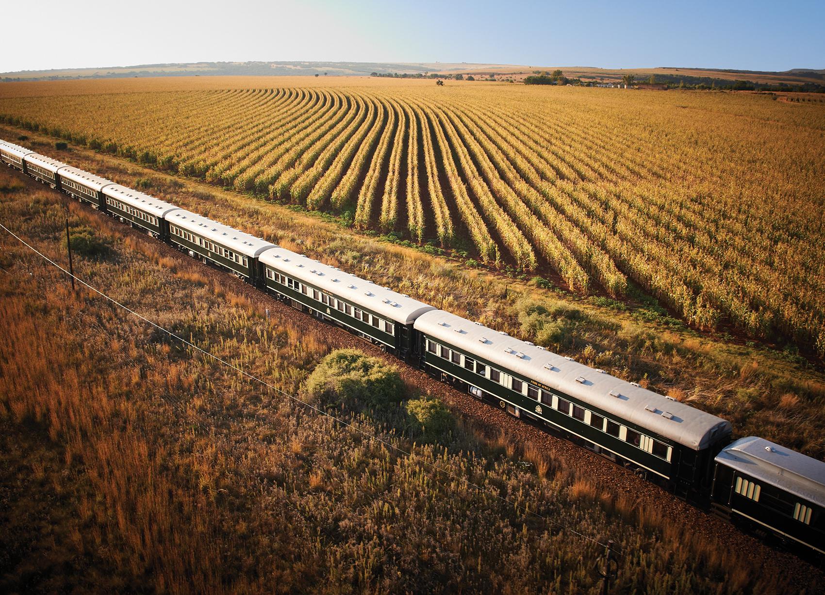 Shongololo train